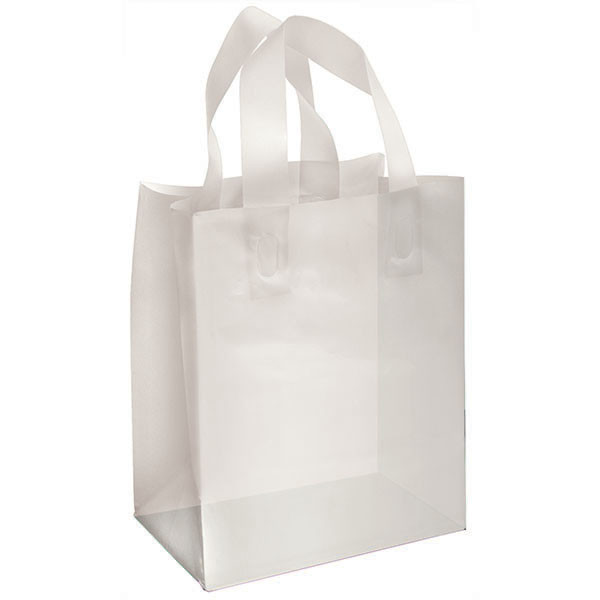 Plastic Frosted Bag Clear 8x5x10