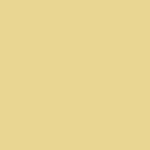 """Tissue 20""""x30"""" 1 ream - dune beige"""